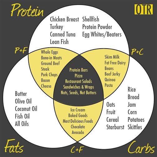 macro diagram lift this eat that rh liftthiseatthat blog